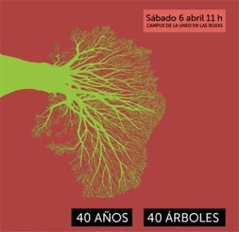 PLATACION 40 ARBOLES